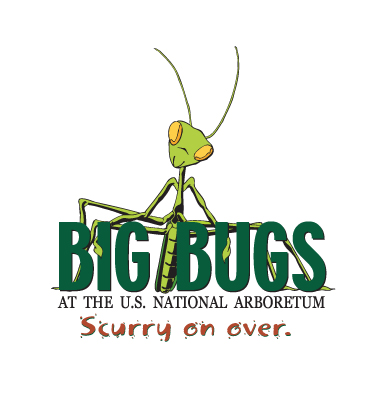 Case Study: Big Bugs Exhibition Identity